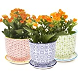 """Chive - Liberte, Small Succulent and Cactus Planter Pot, 3"""" Flower and Plant Container with Drainage Hole / Saucer, Mini Pot for Indoor / Outdoor Garden Decor,  Bulk Set of 3 (Red, Green, Blue)"""