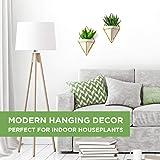 California Home Goods Modern Hanging Planter Pots