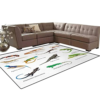 Amazon.com: Reptile, Rug, Lizard Family Design on Plain ...