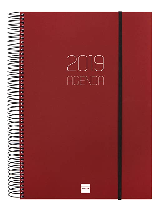Amazon.com : Finocam 742957419 Daily Planner 2019 : Office ...