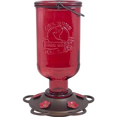 More Birds Hummingbird Feeder, Glass Hummingbird Feeders, Red, 5 Feeding Stations, 13-Ounce Nectar Capacity, Elixir Bottle