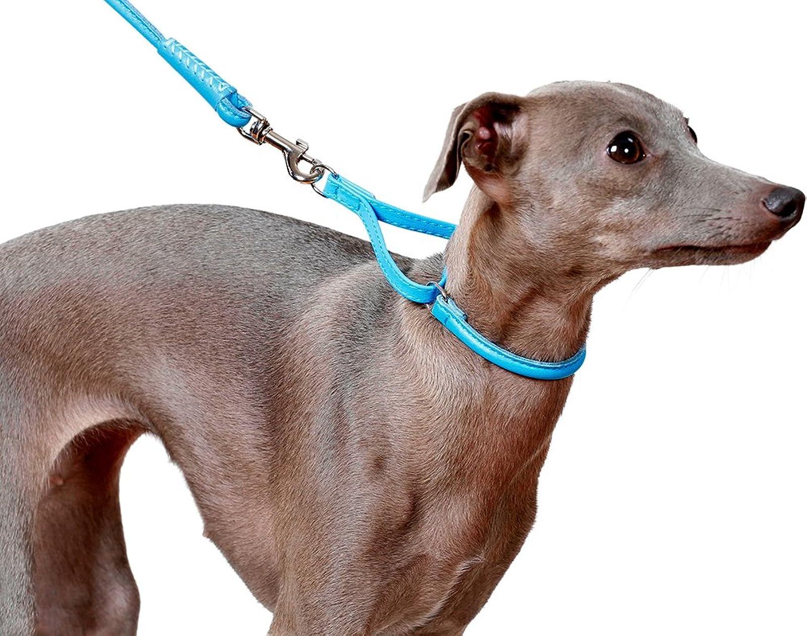 CollarDirect Rolled Martingale Dog Collar Training Genuine - 7