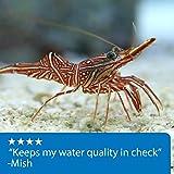 API REEF MASTER TEST KIT Reef Aquarium Water Test