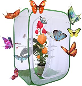 Petforu 36 inches Tall Butterfly House Collapsible Insect and Butterfly Habitat Cage Terrarium Pop-up Open (Large)