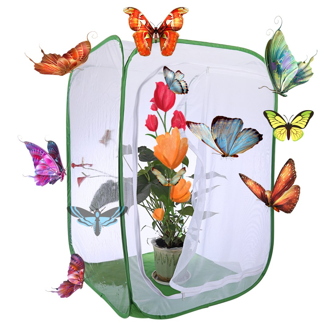 Petforu 35 inches Tall Butterfly House Collapsible Insect and Butterfly Habitat Cage Terrarium Pop-up Open (Large) by Petforu