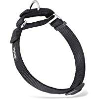 Hyhug Adjustable Martingale Collar for Any Breeds Dogs.