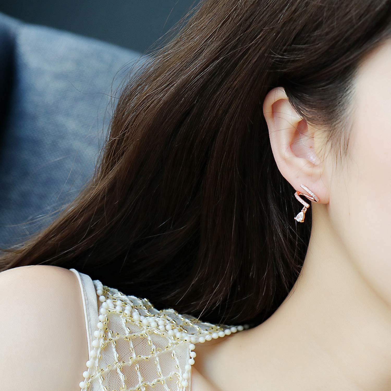 Sterling Silver Water Drop Spiral Earrings S Shape Twist Stud Earrings for Women