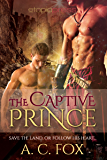 The Captive Prince (The Warriors of Love & Magic Book 2)