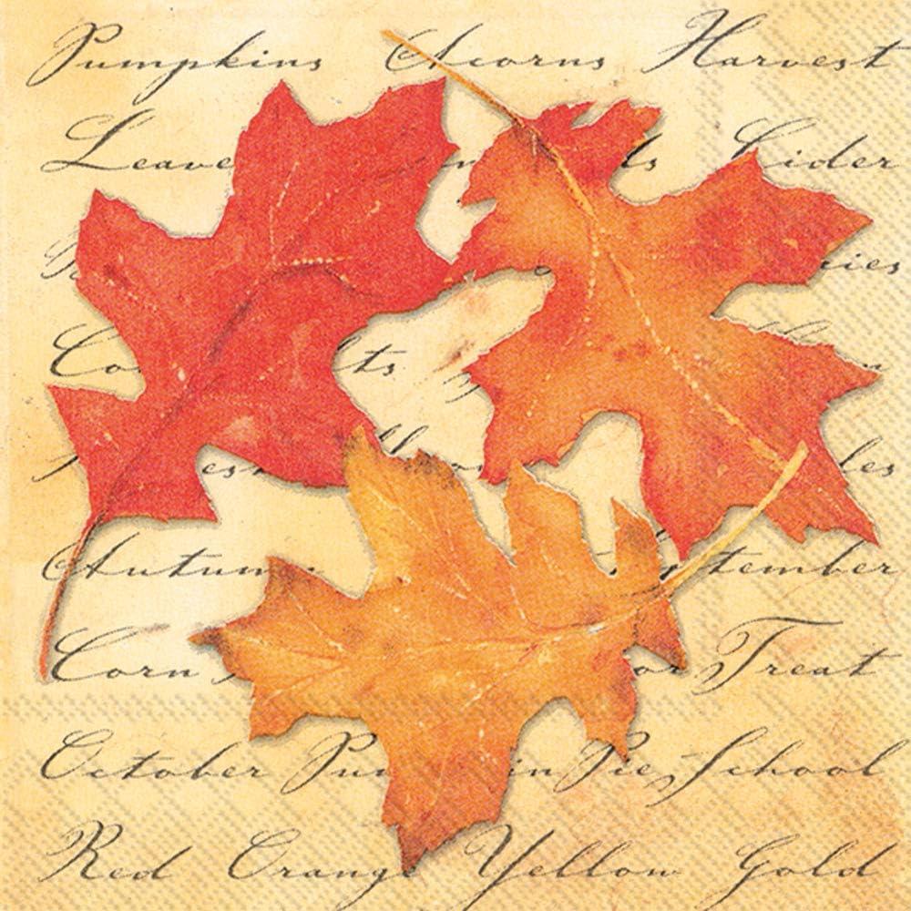 Boston International IHR 20-Count Beverage/Cocktail 3-Ply Paper Napkins, 5 x 5-Inches, Autumn Splendor,C188300