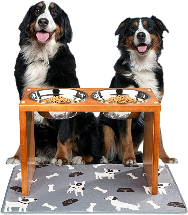 Top 9 Food Stand For Large Dogs