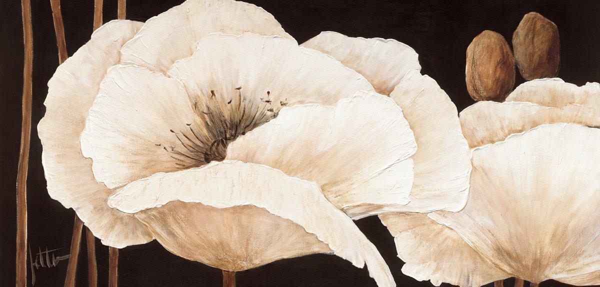 Leinwandbild, Amazing Poppies III, weiße Blumen auf braunem Hintergrund, Gemälde, weiß, 115 x 55 x 2,5 cm von Eurographics