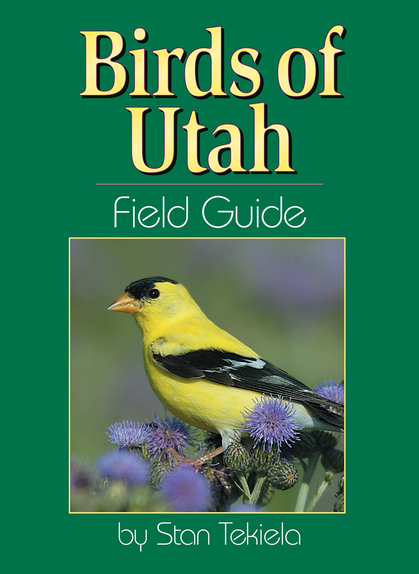 Backyard Birds Salt Lake City Ut - House Backyards