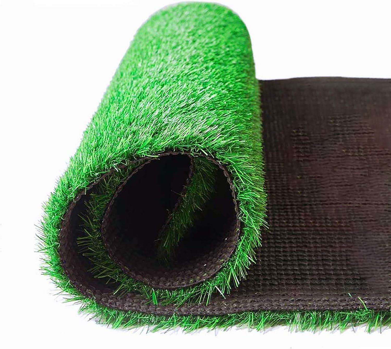 Artificial Grass Door Mat Indoor/Outdoor Turf Grass Carpet Fake Grass Realistic Garden Lawn Turf Mat for Cat Tree Grass Pet Grass Decoration Artificial Turf Carpet 3.28 FT x 6.56 FT (21.52 Square FT)