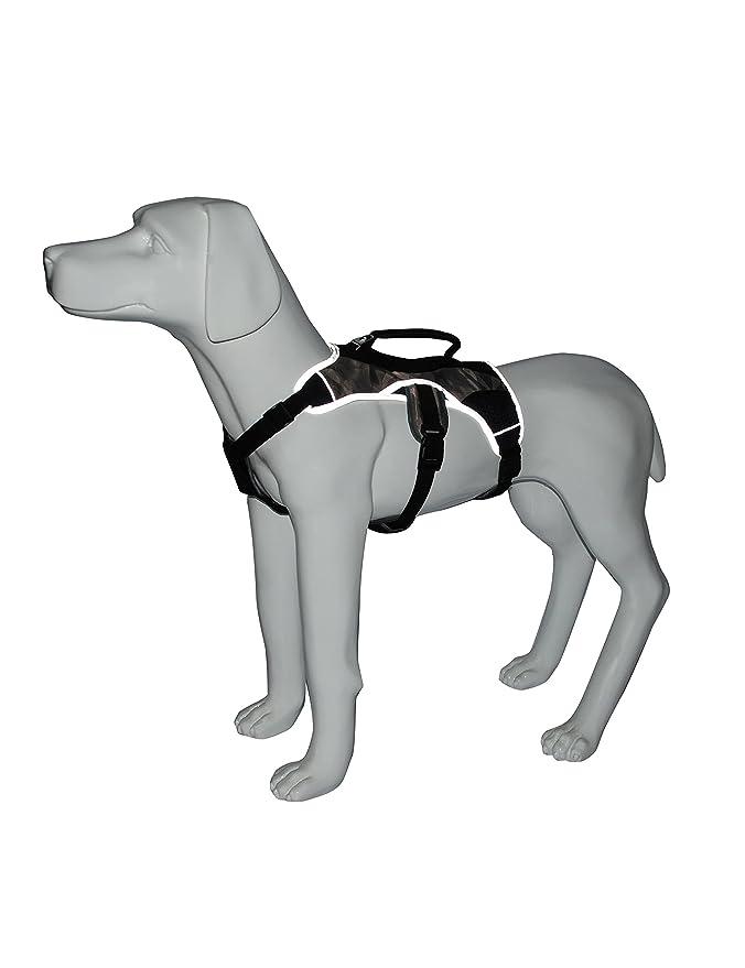 Elderly Dog Harness