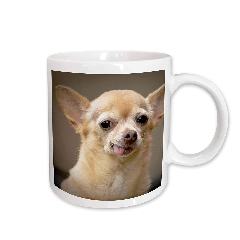 Kitchen Santa Fe Ceramic Mug 3dRose Toothless Chihuahua Dog New Mexico 11-Oz 3E Rose mug/_92682/_1