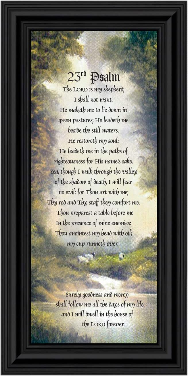 Psalm 23 Christian Wall Art, The Lord is My Shepherd Bible Verses Wall Decor, Christian Decorations for Home, Framed Christian Plaque with Comforting and Encouraging and Words, 7731B