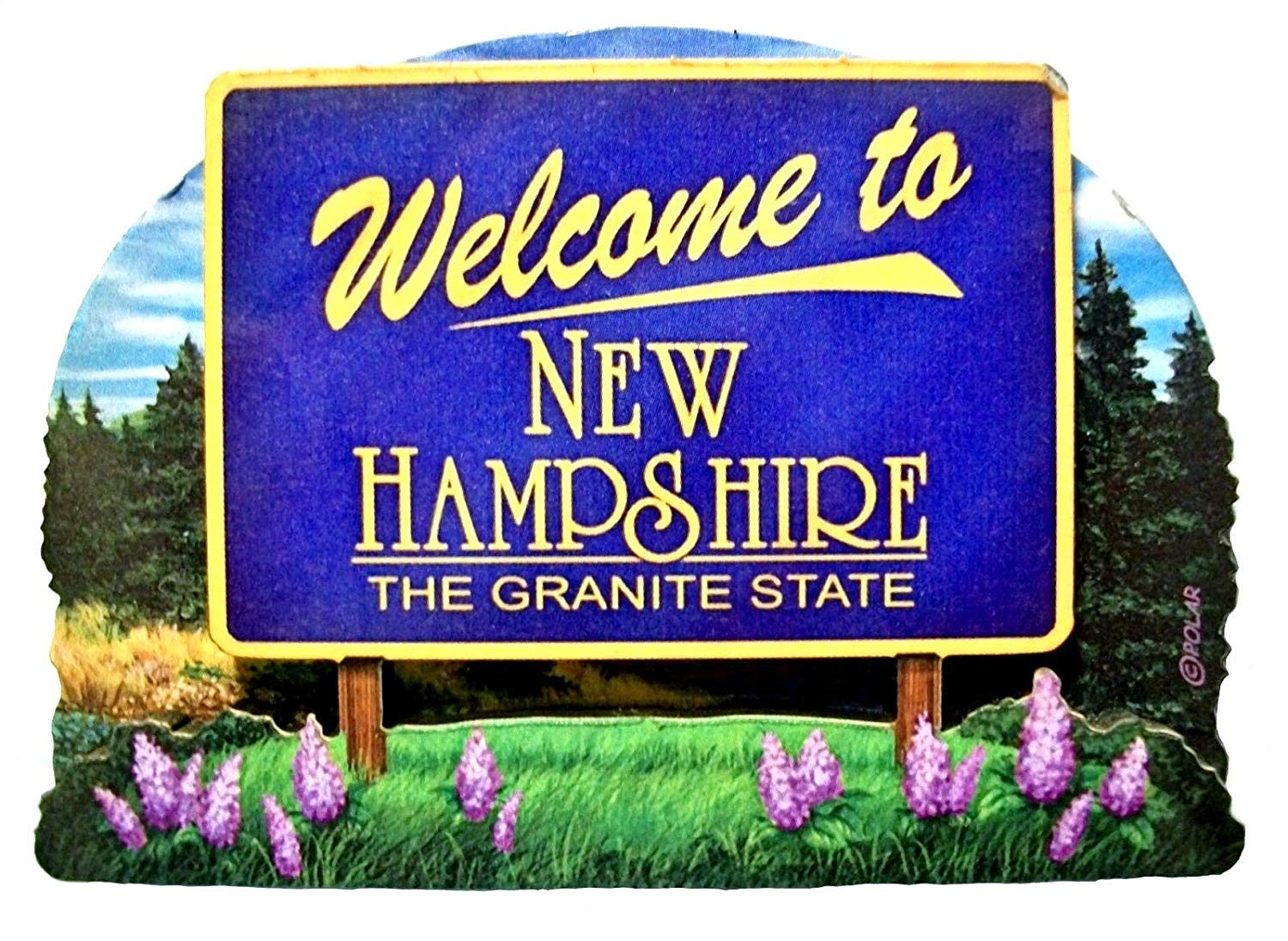 New Hampshire State Welcome Sign Wood Fridge Magnet 2