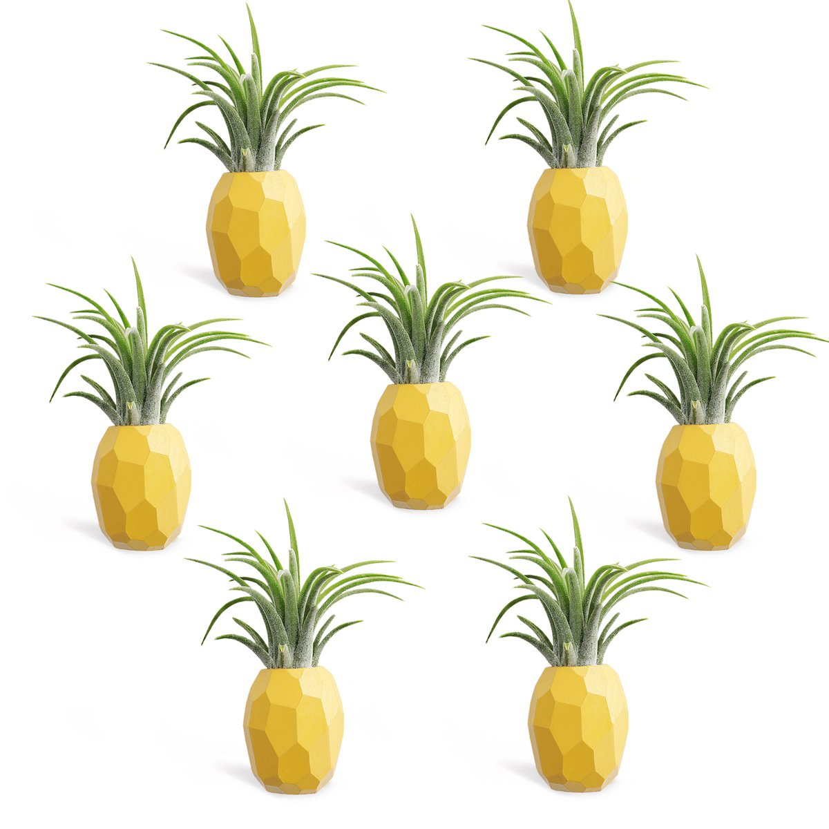 Air Plant Holder,Hanging Air Plant Holders,7 Pack Pineapple Geometric Air Plant Holder Container with Magnet for Hanging Small Air Plants Tillandsia Indoor Wall Home Decor
