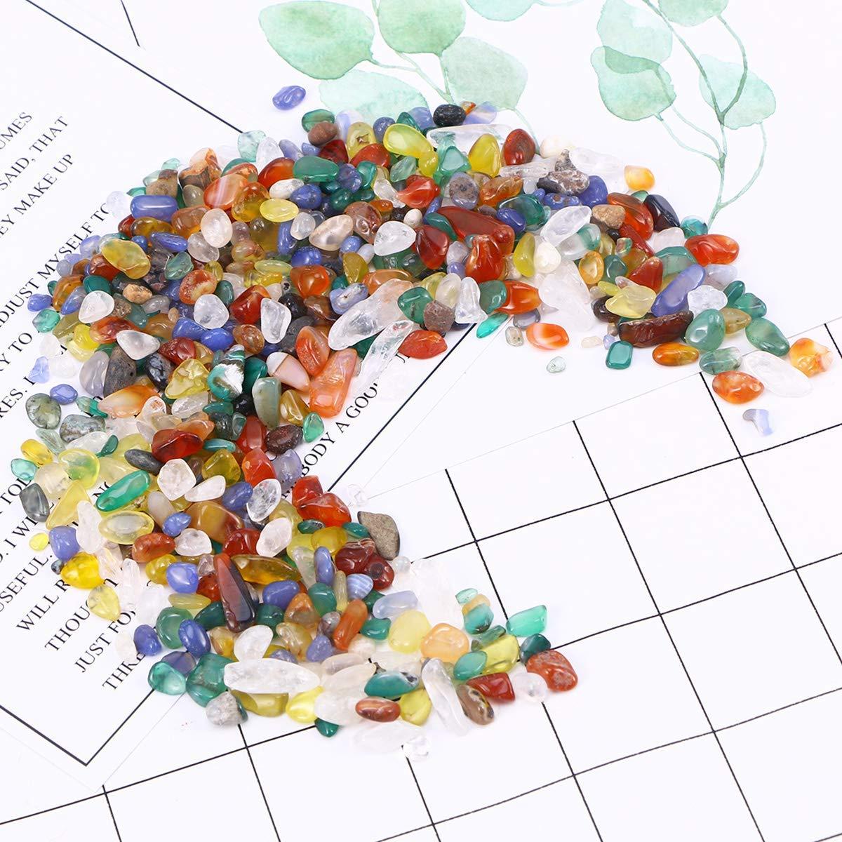 DI ZE LIN PET HOME S.L DZL Piedras pequeñas Colores para Acuario decoración Natural Coloreada 1kg: Amazon.es: Jardín