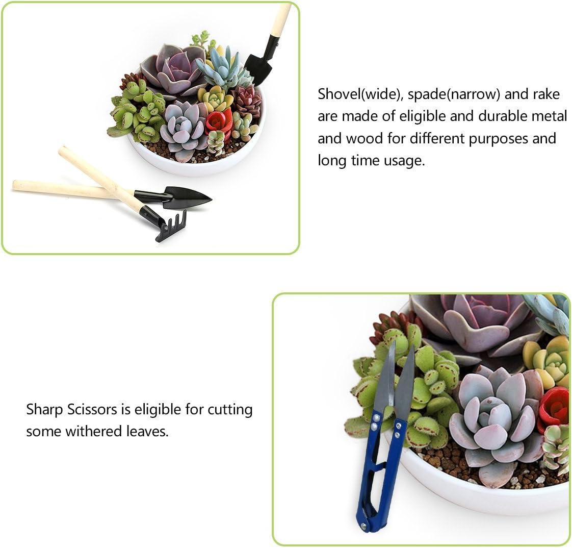 14Pcs Mini herramientas de mano de jardinería mini rastrillo ...