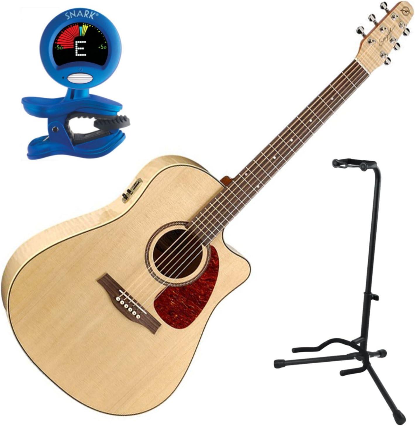 Godin guitarras 032464 Bundle Electroacústica guitarra: Amazon.es ...