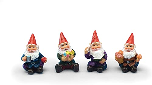 Mini Gnomes Garden Fairy Set of 4