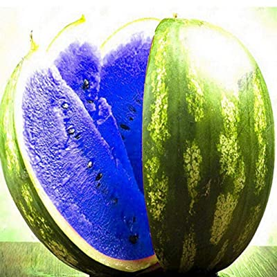 Dozenla Multicolored Watermelon Plants Seeds Fruit Vegetable Plant 100 Seeds Vegetables : Garden & Outdoor