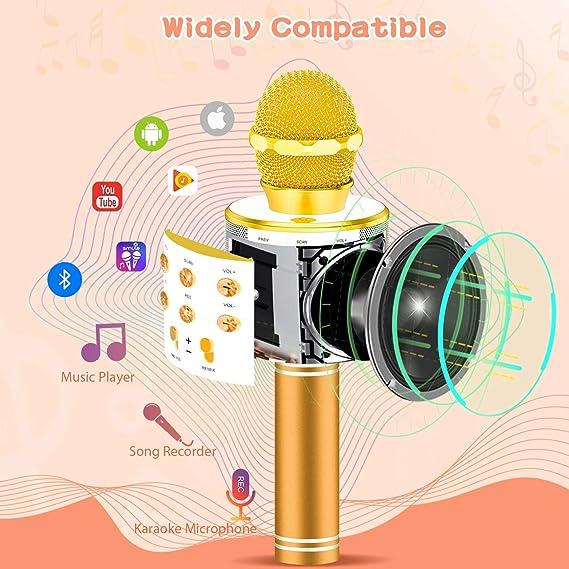 LETS GO! DIMY - Micrófono inalámbrico portátil Bluetooth Karaoke, Dorado: Amazon.es: Deportes y aire libre
