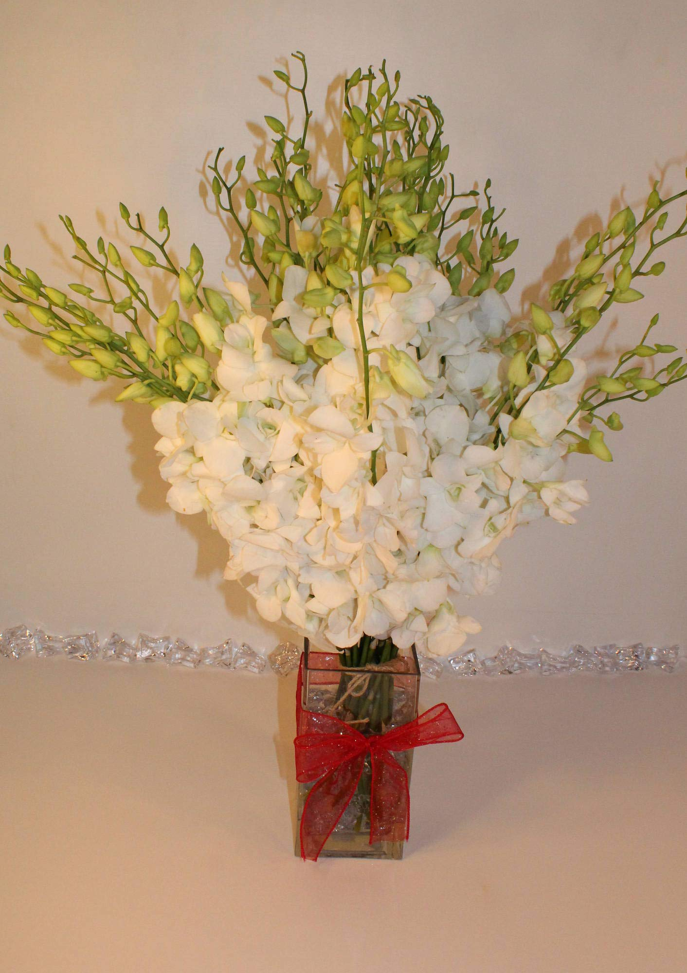 Athena's Garden Mother's Day Special Fresh Cut Snow White Orchid Bouquet for Love, 30 Stems with Glass Vase,