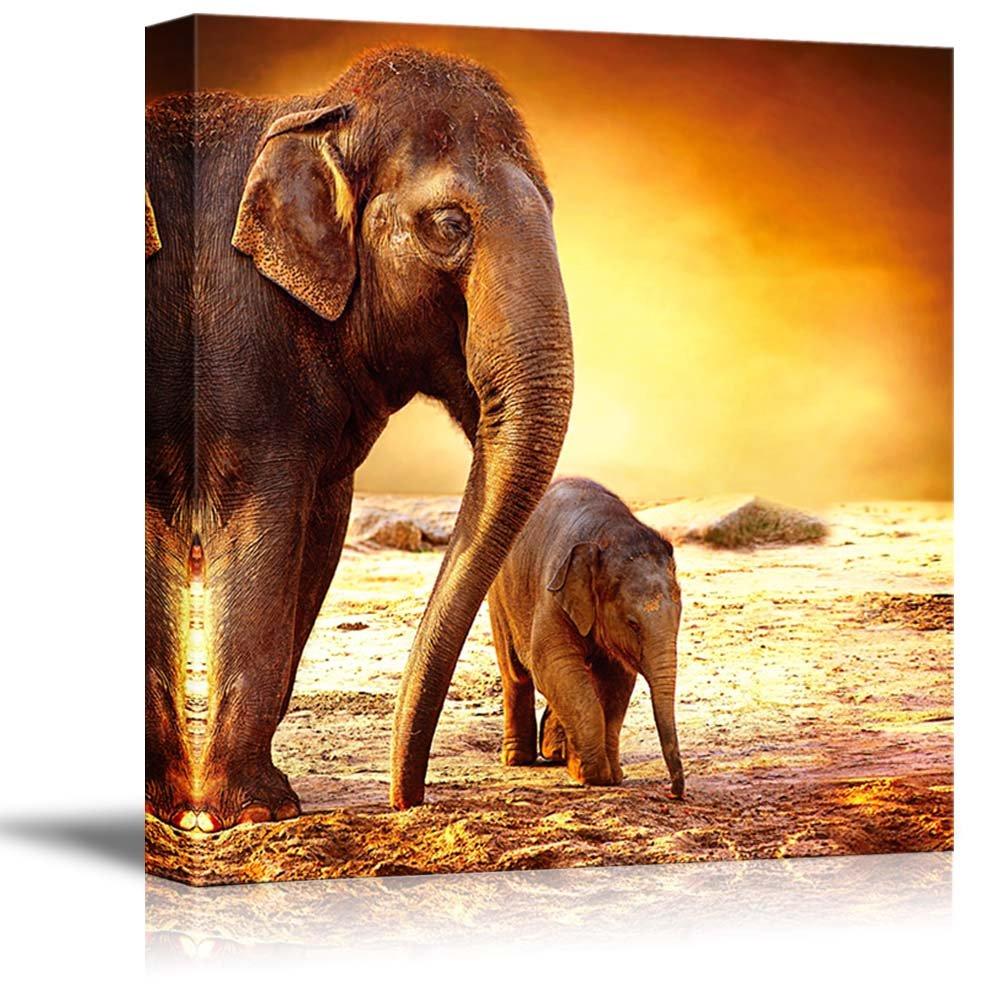 Elephant Family on a Barren Desert with Gorgeous Sunset Wall Decor ...