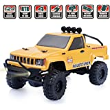 RGT RC Crawlers Car RTR 1/24 Scale 4wd Off Road Monster Rock Crawler 4x4 Mini RC Truck with LED Lights