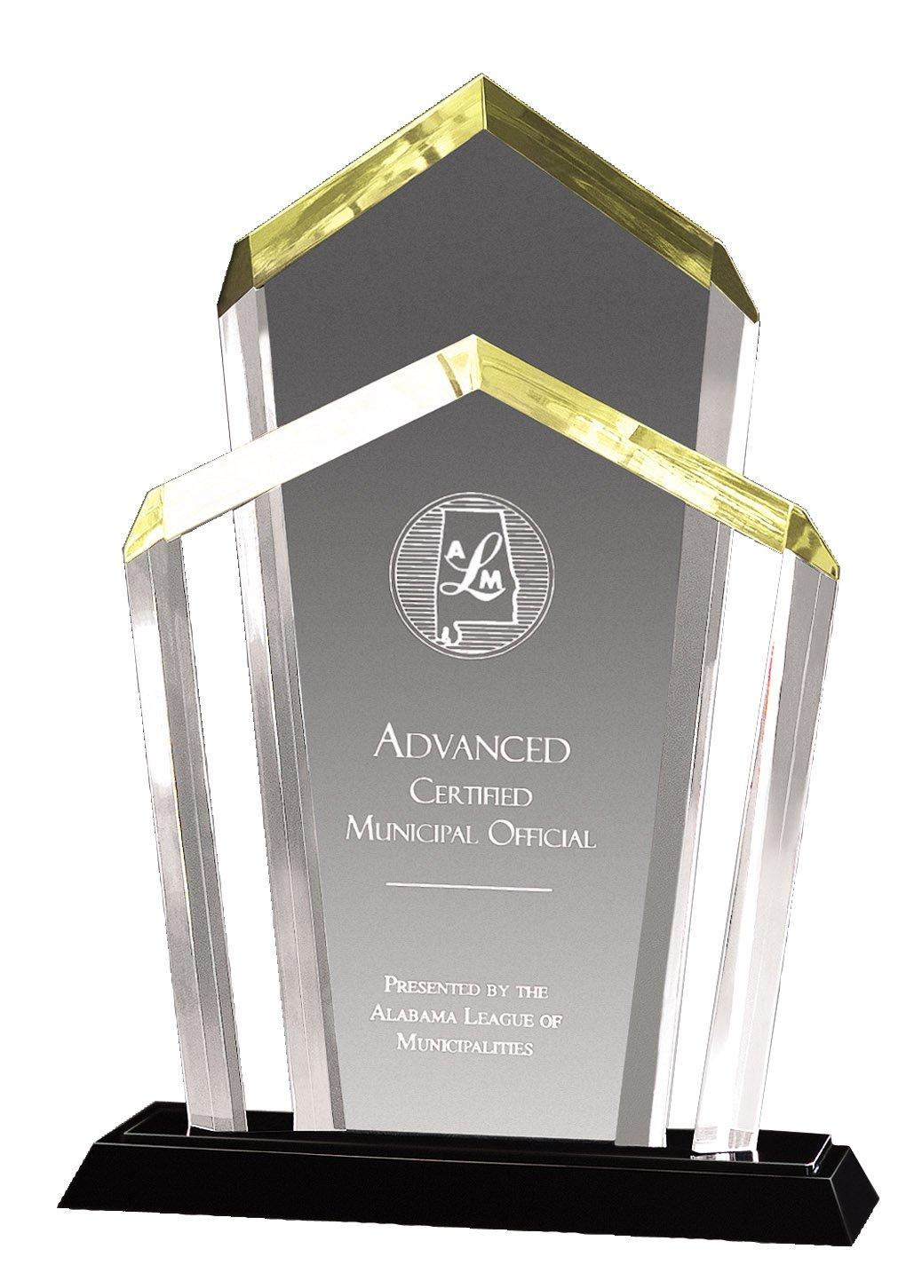 The Trophy Studio Chairman Acrylic Award 8 1/2'' x 12 1/4'' tall