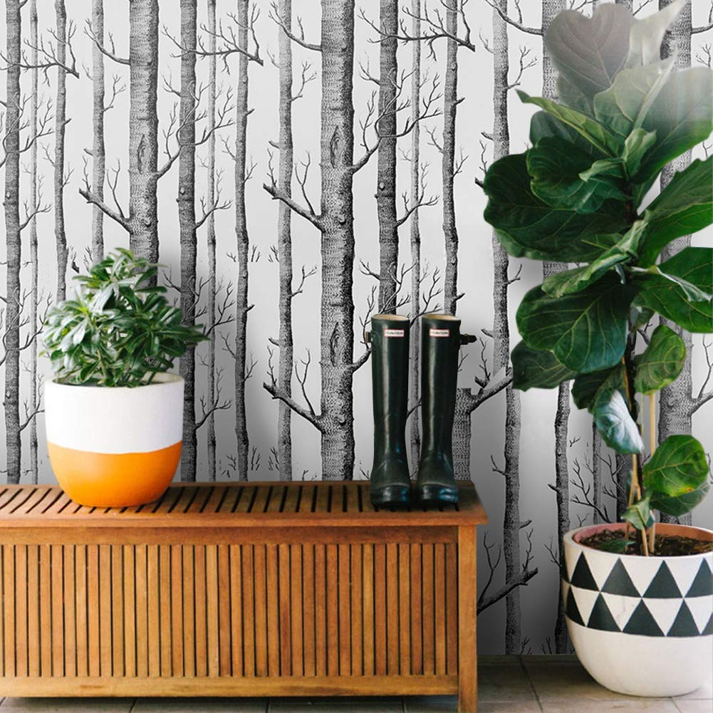 Magnifique Naturelle 3D Birch Motif Papier Peint Rouleau COUTUDI Moderne Fond d/écran Non Tiss/é de Bouleau Mur D/écoration pour salon//TV fond chambre
