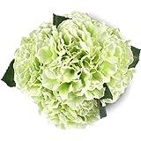 Green Artificial Hydrangea Silk Flowers 5 Heads SOLEDI Artificial Flower Arrangements Bunch Bridal Bouquet Wedding Bouquet for Home Garden Party Decoration Home Decor