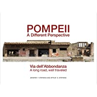 Pompeii: a Different Perspective: Via dell'Abbondanza - a long road, well traveled