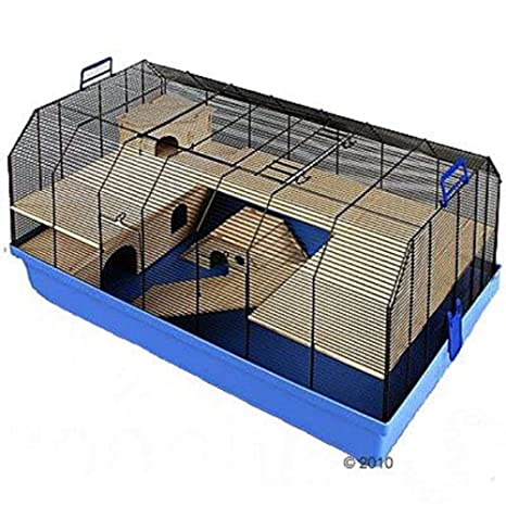 Alexander - Jaula pequeña para mascotas: Amazon.es: Productos para ...