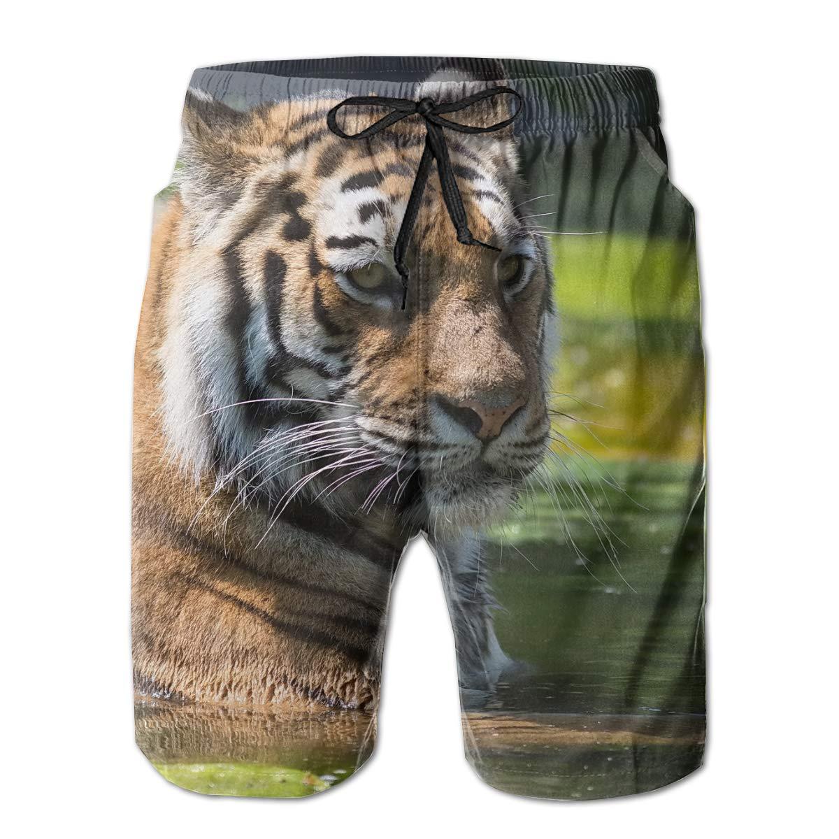 Domple Men 3D Print Summer Drawstring Casual Elastic Waist Tiger Beach Shorts Boardshort Swim Trunk