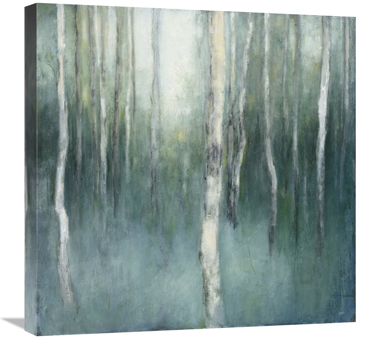 Global Gallery Julia Purinton, Forest Dream\' Giclee Stretched Canvas Artwork 24 x 24