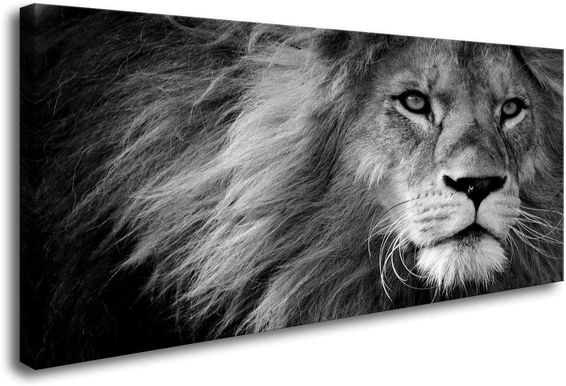 Baisuart Animal Large Canvas Print Wall Art Grey Lion Framed and Stretched Ready to Hang Pictures for Living Room Bedroom Home Office Wall Decor Artwork Black and White