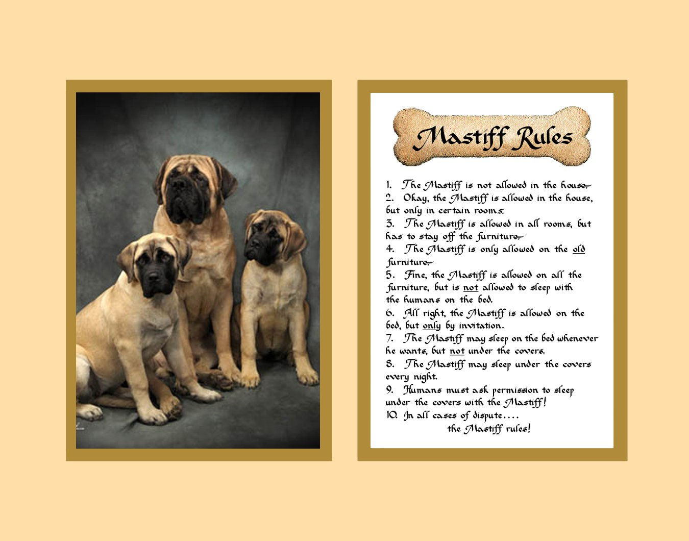 Amazon.com: Dog Rules Mastiff Wall Decor Pet Saying Dog Saying ...