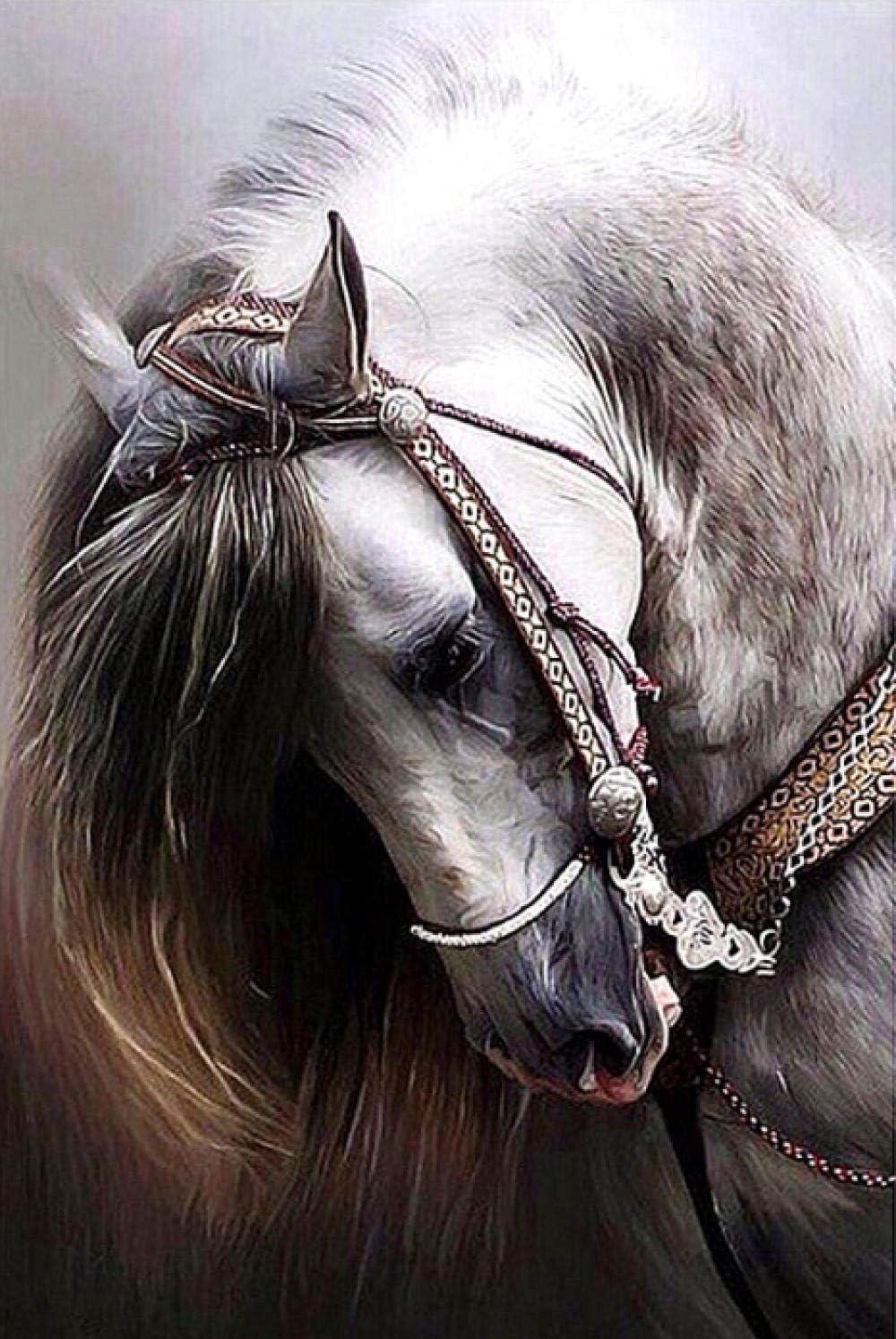 BVWSBGF 5D DIY Diamond Painting Full Drill Punto de Cruz Diamante, caballo blanco Pintura por número Cuadros Punto Manualidades decoración de la Pared para el hogar30x40cm