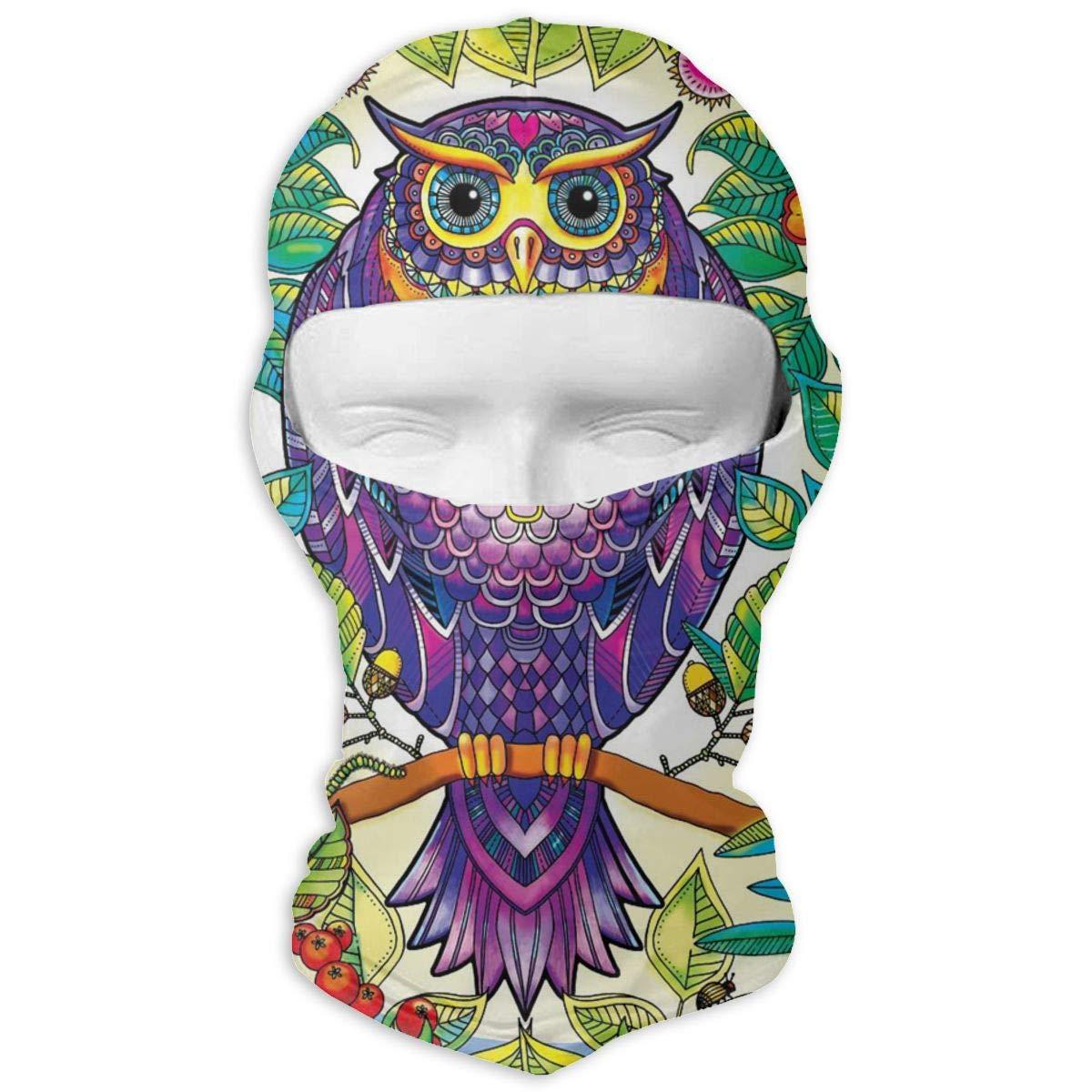 Wind-Resistant Face Mask LaoJi Colorful Owl Painting Winter Ski Mask Balaclava Hood