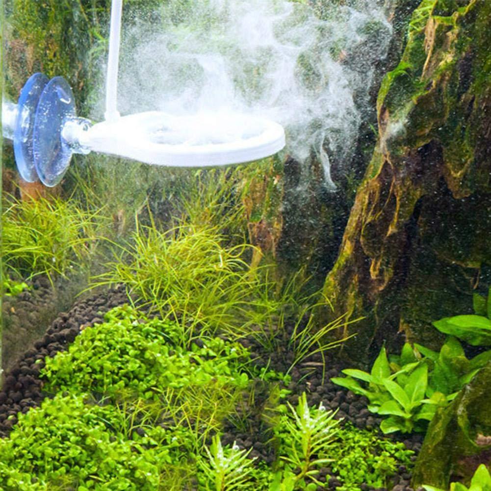 L/â Vestmon 3 in 1 Algae Remover Chihiros Doctor Twinstar Electronic Lock Green Aquarium Filter Pump Fish Water Plant Tank White 3 in 1 Set
