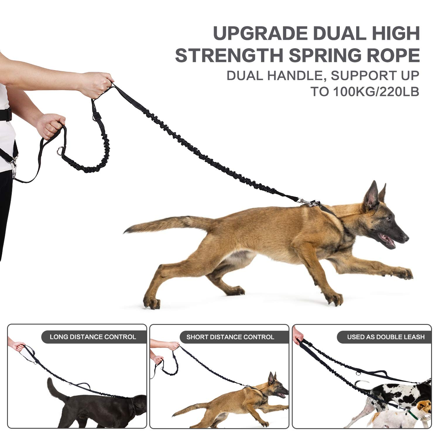 Pecute Hands Free Dog Leash with Pouch, Comfortable Shock Absorbing Reflective Bungee Dog Walking & Training Leash Great for Medium & Large Dogs up to 220lbs
