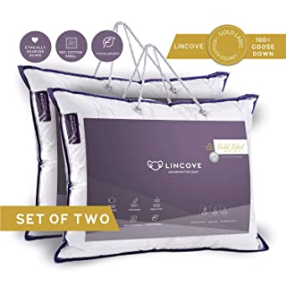 Lincove 100% Goose Down Luxury Sleeping Pillow Set of 2 - Enhance Your Sleep with The Ultra Soft Down RÊVUER Bed Pillow 800 Fill Power 600 Thread Count (Queen (Medium))