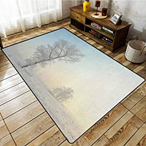 Hallway Rug,Winter,Frozen Tree on Sunny Winter Morning Rising Sun Landscape Deserted Land,Rustic Home Decor Pale Blue Cream White