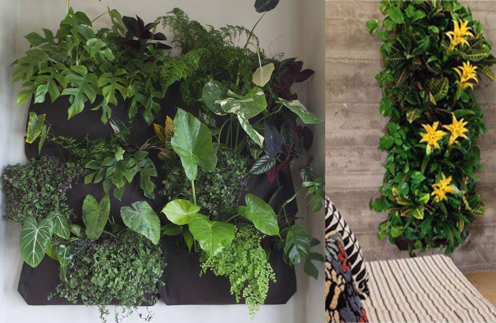 Fieltro Negro Vertical maceta jardín vida decoración de la pared flores bolsa de cultivo con hierbas fresas: Amazon.es: Jardín
