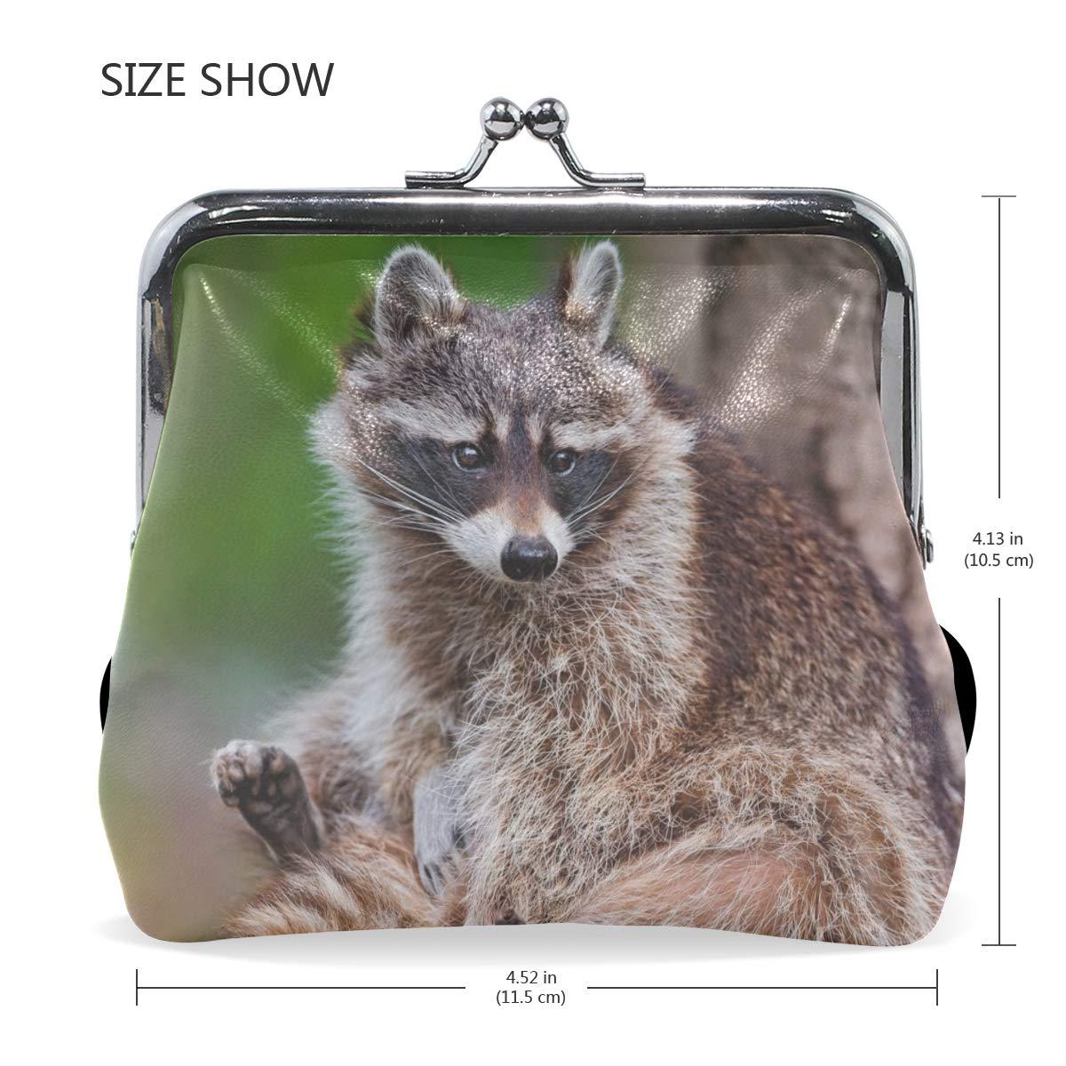 Rh Studio Coin Purse Raccoon Animal Tree Striped Print Wallet Exquisite Clasp Coin Purse Girls Women Clutch Handbag