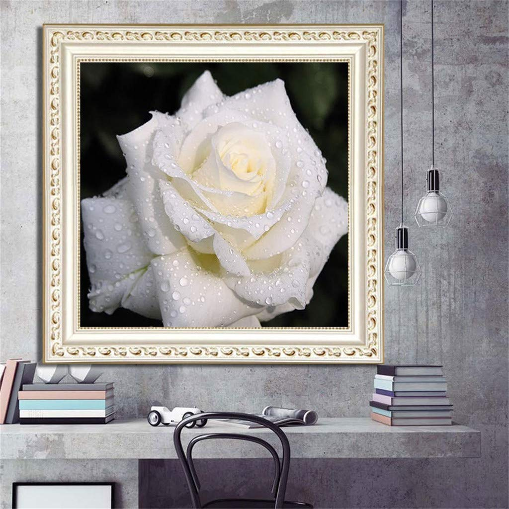 B Cross Stitch Kits Crystal Rhinestone Diamond Embroidery Paintings Pictures Arts Craft for Home Wall Decor Full Drill Cross Stitch Kit DIY 5D Diamond Paintings by Number Kit 11.811.8IN