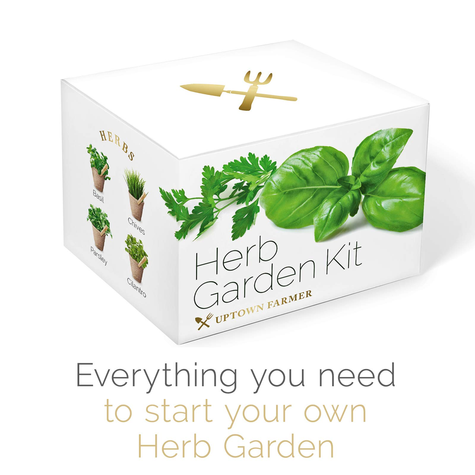 Indoor Herb Garden Starter Kit - Growing Seed Set Gardening Gifts for Women or Men with 100% Non GMO Heirloom Seeds (Basil, Cilantro, Parsley, Chives) Planter Peat Pots, Peg Markers, Scissors + Soil by Uptown Farmer (Image #7)